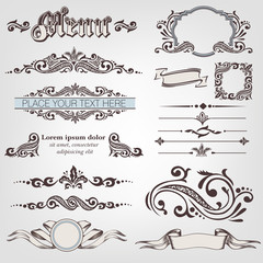 Vector ornate. Set of retro elements for menu and other documents