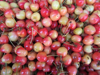 cherries just told appetizing ready for sale