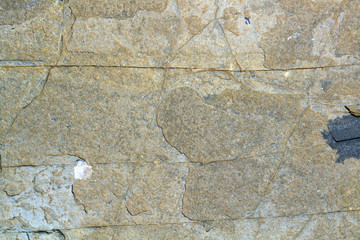 Yellow sand stone surface texture with cracks. Sea limestone.