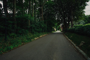 Empty asphalt country road passing through green forests and villages. Summer countryside landscape in the region of Normandy, France. Recreation, nature, holidays, travel and road network concept.
