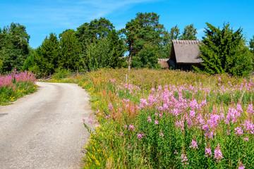 Rural road. Estonia, EU