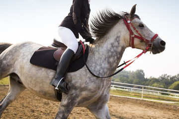Cheerful young Chinese woman riding horse