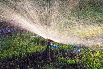 Splashing water to water the lawn as a background