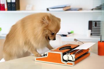 Pomeranian dog typing on a vintage typewriter
