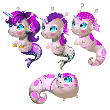 Set fantasy cartoon seahorse isolated on a white background. Stages of transformation from larvae in the sea unicorn with Golden hooves. Vector cartoon close-up illustration.
