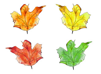 Set of 4 autumn watercolor maple leaves. Isolated maple leaf. Hand drawn watercolor painting