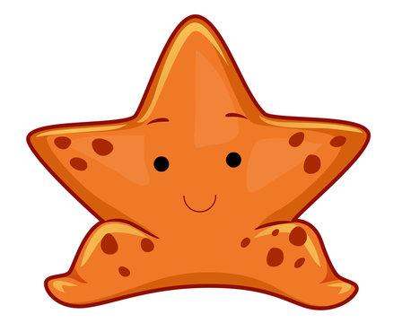 Star Fish Illustration