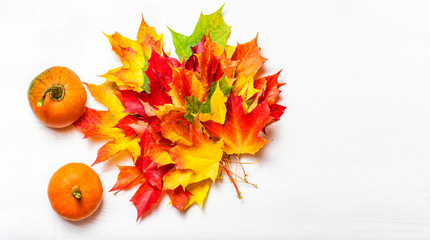 Thanksgiving Background with Pampkins and colorful autumn marple leaves on white wooden table. Copyspace