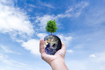Ecological environment world in hands holding love earth and trees of Elements of this image furnished by NASA