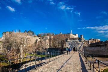 Famous Avignon Bridge also called Pont Saint-Benezet at Avignon France