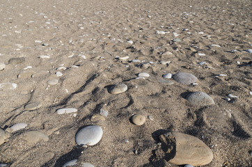 Marine pebble and shells with perspective view as a summer background