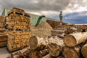 Crushing machine of wood and logs to process waste and transform into pellets