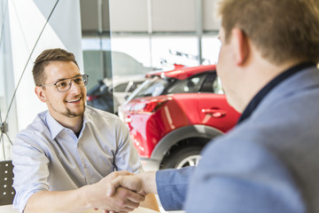 Business car seller working with the client