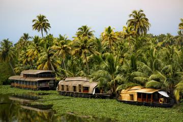 Houseboats on Vembanad Lake, Kerala, India