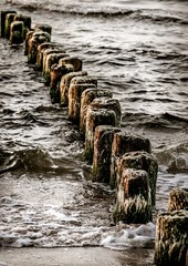 drewniane falochrony nad morzem