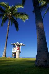 walking in hawaii