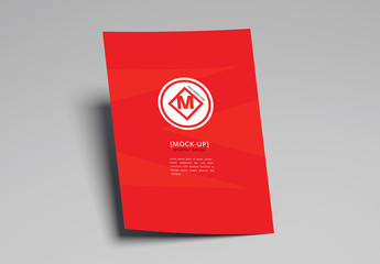 Flyer Mockups on a Solid Background
