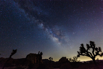 Night Shot of the Milky Way above Joshua Tree National Park