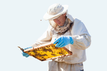 Beekeeper is working with bees and beehives on the apiary. Beekeeper on apiary. isolated