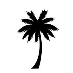 black silhouette of palm tree icon on white background.
