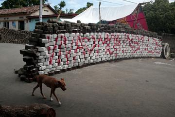 A dog walks past a barricade in the indigenous community of Monimbo in Masaya