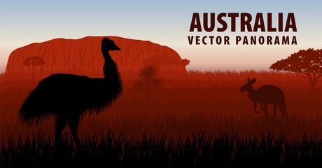 vector panorama of Australia with ostrich Emu and kangaroo