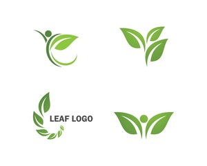 green leaf ecology nature element