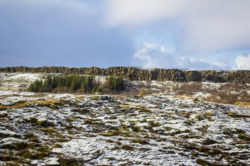 Tundra Peeking through the Snow in the Wilderness of the Golden Circle of Iceland