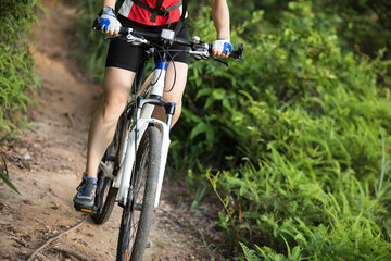 Mountain biker cycling on summer forest trail