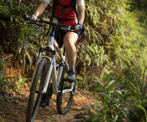 woman cyclist riding mountain bike on forest  trail