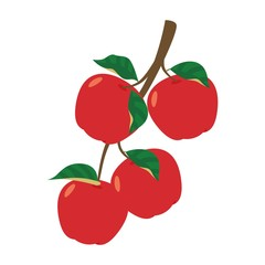 Red apples on the stalk with leaves vector illustration