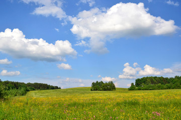 Spring nature grassland landscape against  blue sky with clouds