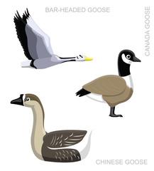 Bird Goose Set Cartoon Vector Illustration