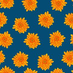 Yellow Chrysanthemum on Indigo Blue Background