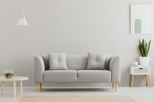 Green plant on a scandinavian cabinet with drawer and a cozy couch with pillows in a gray, simple living room interior with place for a coffee table. Real photo.