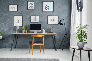 Plant on table near wooden chair at desk with computer desktop in freelancer's interior. Real photo