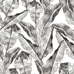 Tropic plants floral seamless jungle pattern. Print vector background of fashion summer wallpaper palm banana leaves in black and white gray style