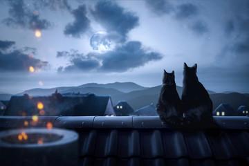 Obraz Katzen sitzen auf einem Dach in der Nacht - fototapety do salonu