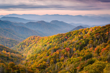 Fotomurales - Great Smoky Mountains National Park