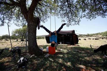 The Wider Image: Turkey's last nomads roam Anatolia