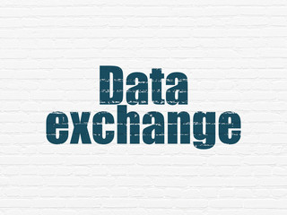 Information concept: Painted blue text Data Exchange on White Brick wall background