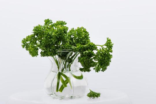Bouquet de persil
