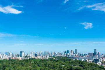Photo sur Aluminium Bleu jean 東京風景