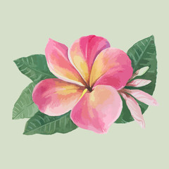 Vector. Flowers, leaves and buds of plumeria.Watercolor background. Abstract wallpaper with floral motifs.  Wallpaper.  Use printed materials, signs, posters, postcards, packaging.