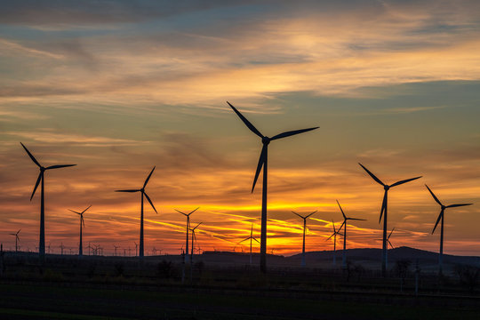 Group of wind power turbines at a sunset.