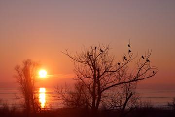 Orange sunset behind the sea