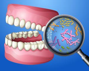 A Close-up Oral Bacteria