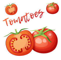 Whole and half of tomato vegetable. Cartoon vector icon isolated on white background. Series of food and drink and ingredients for cooking