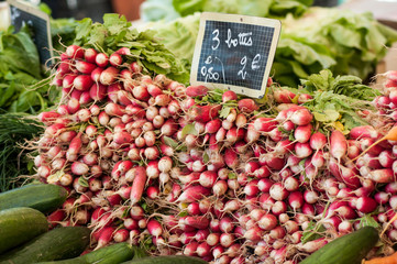 closeup of radishes pile at the market