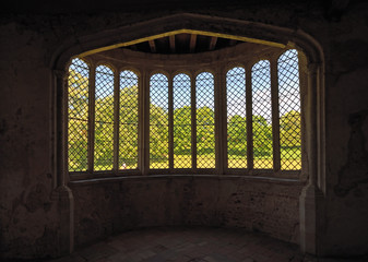 The through Historic  bay window  to trees and grass.